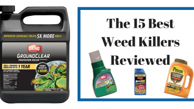 Photo of 15 Best Weed Killers – A Complete Review